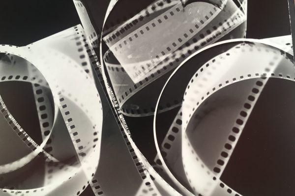 35mm film b:w photogram