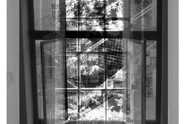 Berggasse_Maresfield window low res