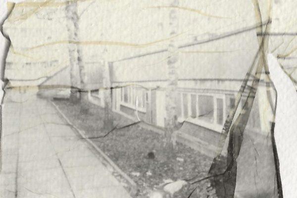 b/w Polaroid emulsion lift on watercolour paper