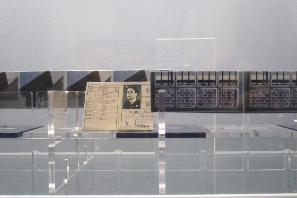 A Freud & Play shelf